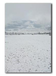 Sneeuwval in de ochtend