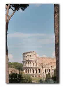 web Colosseum IMG 0881