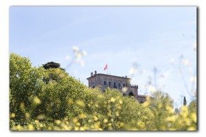 web huis in geel IMG 1410