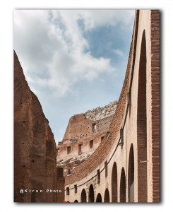 web in Colosseum IMG 0752