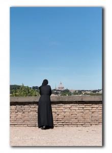 web non kijkt naar St Pieter IMG 1305
